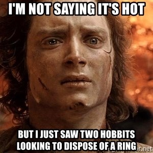 Frodo  - I'm not saying it's hot But I just saw two hobbits looking to dispose of a ring