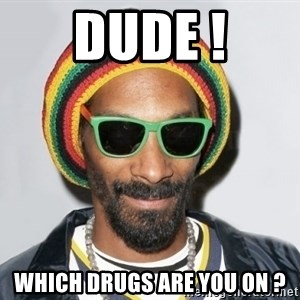 Snoop lion2 - dude ! which drugs are you on ?