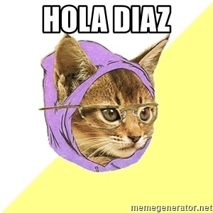 Hipster Kitty - hola Diaz