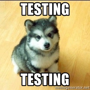 Baby Courage Wolf - testing testing