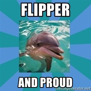 Dyscalculic Dolphin - Flipper And Proud