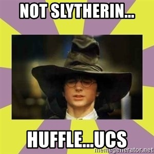 Harry Potter Sorting Hat - Not Slytherin... Huffle...UCS