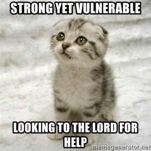 Can haz cat - Strong yet vulnerable looking to the Lord for help