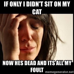 First World Problems - if only i didn't sit on my cat now hes dead and its all my foult