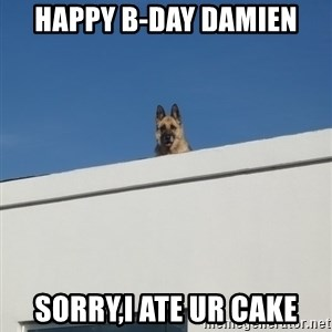 Roof Dog - Happy B-day Damien Sorry,i ate ur cake