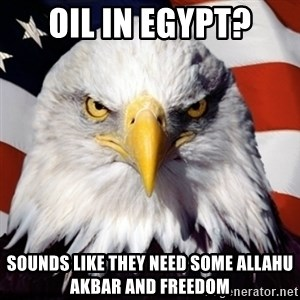 Freedom Eagle  - oil in egypt? sounds like they need some Allahu akbar and freedom