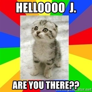 Cute Kitten - Helloooo  J. Are you there??