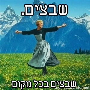 Look at All the Fucks I Give - שבצים.  שבצים בכל מקום