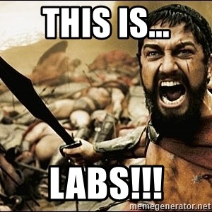 This Is Sparta Meme - THIS IS... LABS!!!