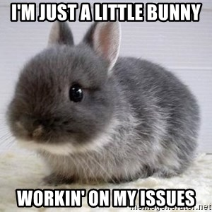 ADHD Bunny - I'm just a little bunny workin' on my issues
