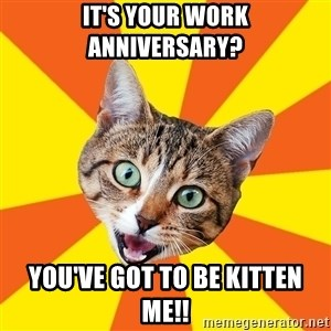 Bad Advice Cat - It's your work anniversary? You've got to be kitten me!!