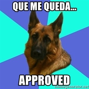 German shepherd - que me queda... approved