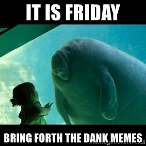 Overlord Manatee - It is Friday Bring forth the dank memes