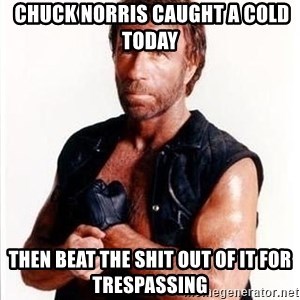 Chuck Norris  -  Chuck Norris caught a cold today then beat the shit out of it for trespassing