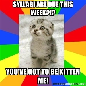 Cute Kitten - Syllabi are due this week?!? You've got to be kitten me!