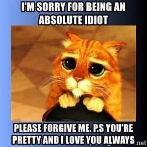 puss in boots eyes 2 - I'm sorry for being an absolute idiot Please forgive me. P.S You're pretty and I love you always