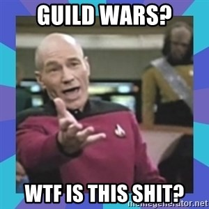 what  the fuck is this shit? - Guild wars? WTF IS THIS SHIT?