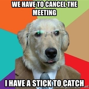 Business Dog - we have to cancel the meeting i have a stick to catch