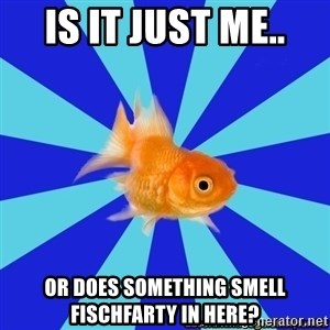 Absentminded Goldfish - is it just me.. or does something smell Fischfarty in here?