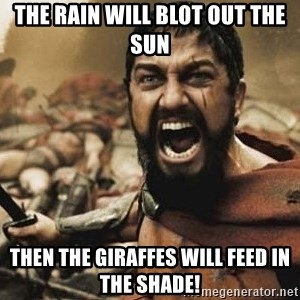 300 - The rain will blot out the sun Then the giraffes will feed in the shade!