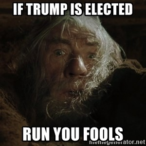 gandalf run you fools closeup - if trump is elected run you fools