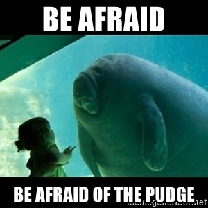 Overlord Manatee - Be afraid Be afraid of the Pudge