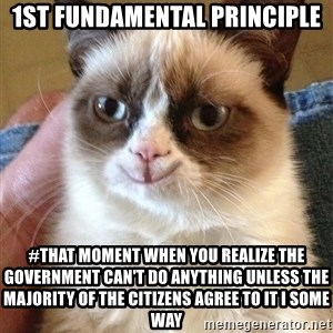 Happy Grumpy Cat 2 - 1st fundamental principle #That moment when you realize the government can't do anything unless the majority of the citizens agree to it i some way