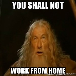 Gandalf You Shall Not Pass - YOU SHALL NOT WORK FROM HOME