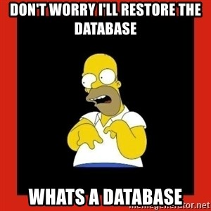 Homer retard - Don't Worry I'll Restore the Database Whats a database
