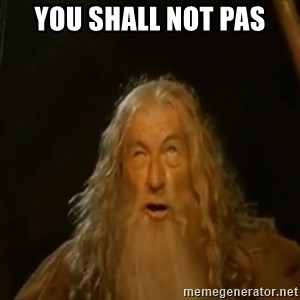 Gandalf You Shall Not Pass - YOU SHALL NOT PAS