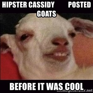 10 goat - Hipster Cassidy          posted goats before it was cool