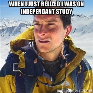 Bear Grylls - when i just relized i was on independant study