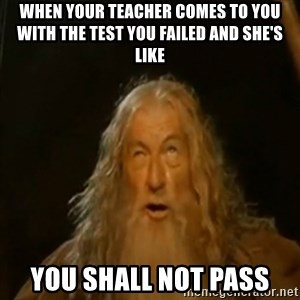 Gandalf You Shall Not Pass - When your teacher comes to you with the test you failed and she's like you Shall not pass