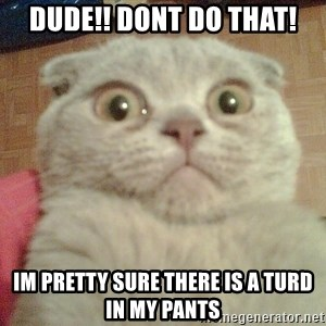 GEEZUS cat - dudE!! dont do that! im pretty sure there is a turd in my pants