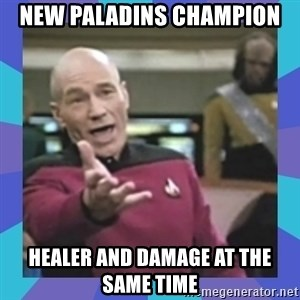what  the fuck is this shit? - New Paladins Champion Healer and Damage at the same time