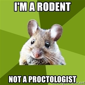 Prospective Museum Professional Mouse - I'm a rodent not a proctologist