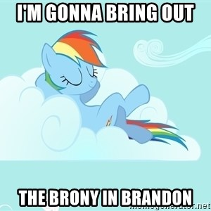 Rainbow Dash Cloud - I'm gonna bring out  the Brony in Brandon