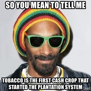 Snoop lion2 - so you mean to tell me tobacco is the first cash crop that started the plantation system