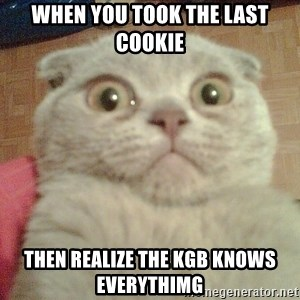 GEEZUS cat - when you took the last cookie  then realize the KGB knows everythimg
