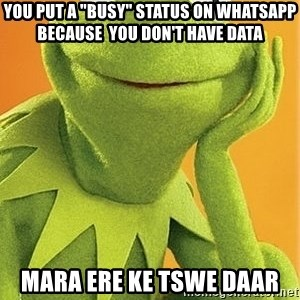 """Kermit the frog - YOU PUT A """"BUSY"""" STATUS ON WHATSAPP  BECAUSE  YOU DON'T HAVE DATA MARA ERE KE TSWE DAAR"""