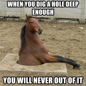 Hole Horse - WHEN YOU DIG A HOLE DEEP ENOUGH YOU WILL NEVER OUT OF IT