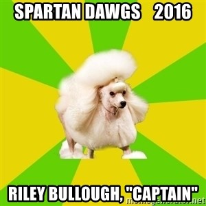 "Pretentious Theatre Kid Poodle - Spartan Dawgs    2016 RILEY BULLOUGH, ""Captain"""