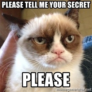 Mr angry cat - please tell me your secret please