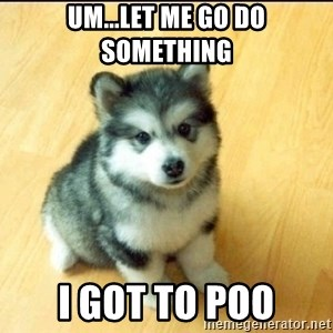 Baby Courage Wolf - um...let me go do something i got to poo