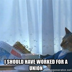 newspaper cat realization -  i should have worked for a union