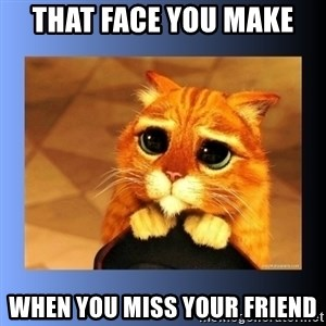 puss in boots eyes 2 - THAT FACE YOU MAKE  WHEN YOU MISS YOUR FRIEND