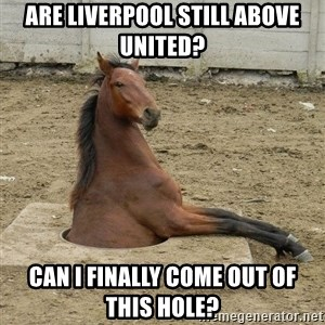 Hole Horse - Are Liverpool still above United? Can I finally come out of this hole?