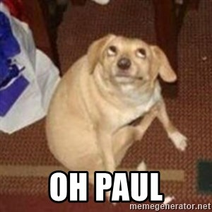 Oh You Dog -  oh paul