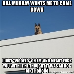 "Roof Dog - bill murray wants me to come down i just ""woofed"" on em' and meant fuck you with it he thought it was an dog joke höhöhö"