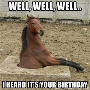 Hole Horse - Well, well, well.. I heard it's your birthday